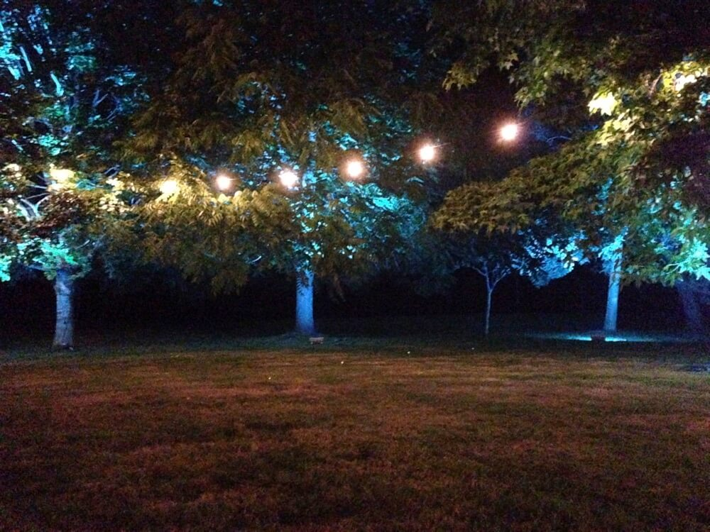 Outside Festoons & LED Colour Changing Uplights