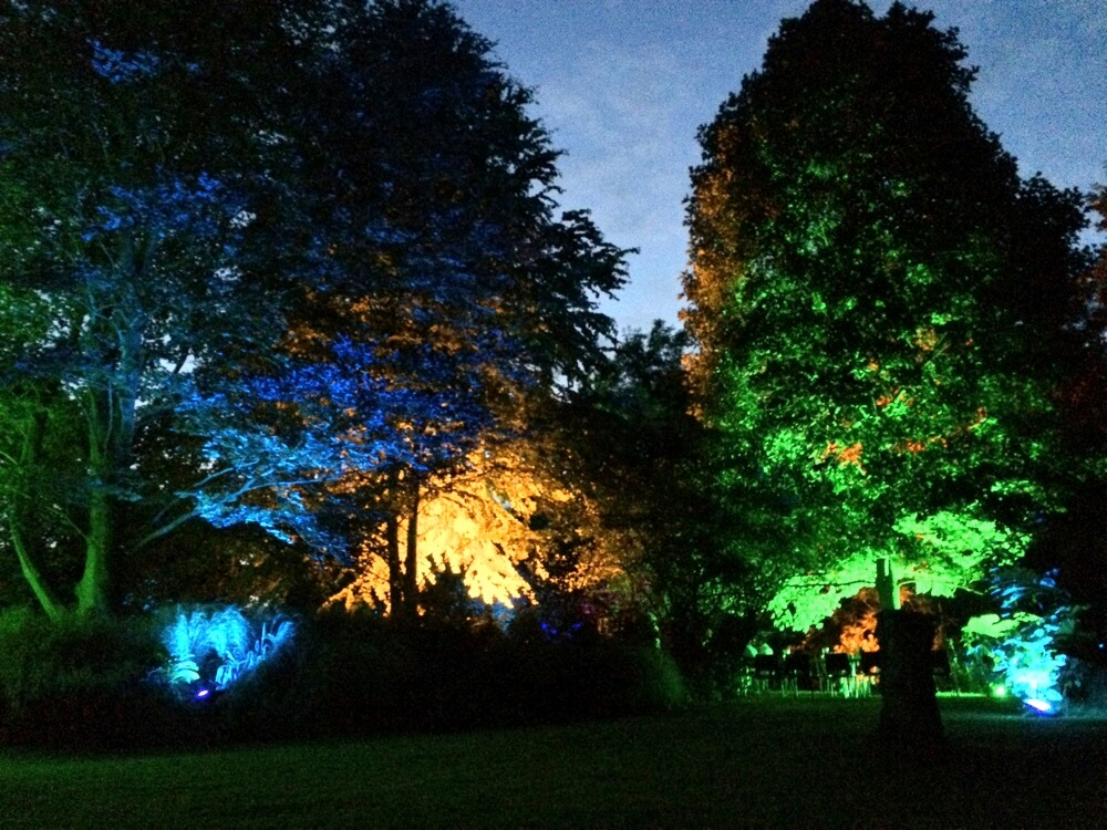 Romsey Corporate Garden Party - Lighting